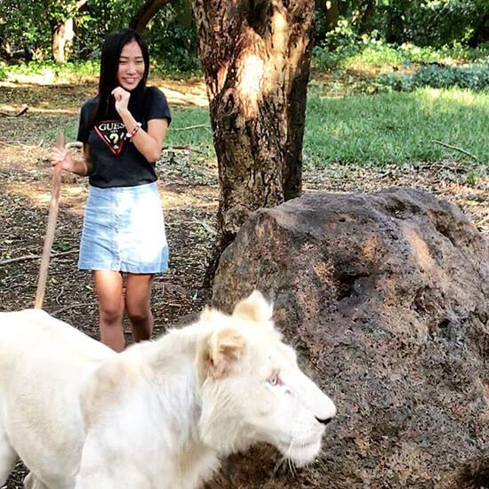 Mauritius-Casela Nature Park-Walking with Lions-Clara Travels