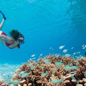 Mauritius-Diving-Clara Travels