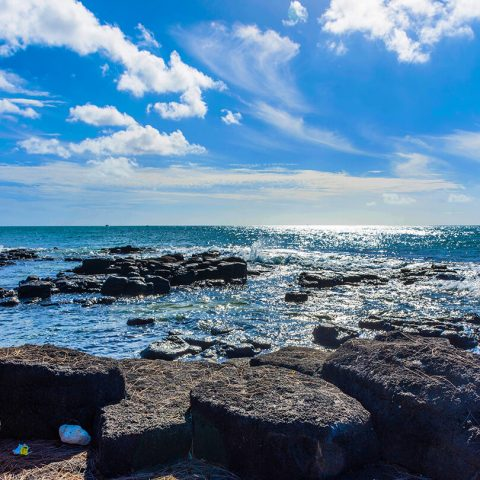 Mauritius-Landscape-Clara Travels